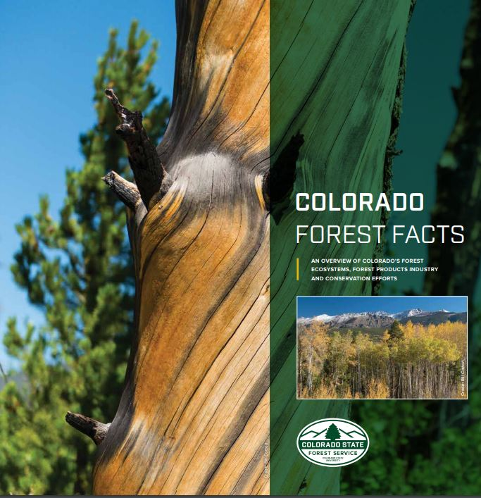 Colorado Forest Facts