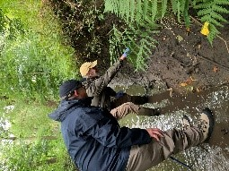 Water Vole survey with the Croxteth Park Volunteer Group