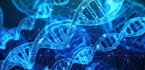 Foto (kleur) DNA