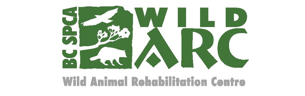 Wild Arc Logo