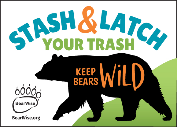 new BearWise sticker design