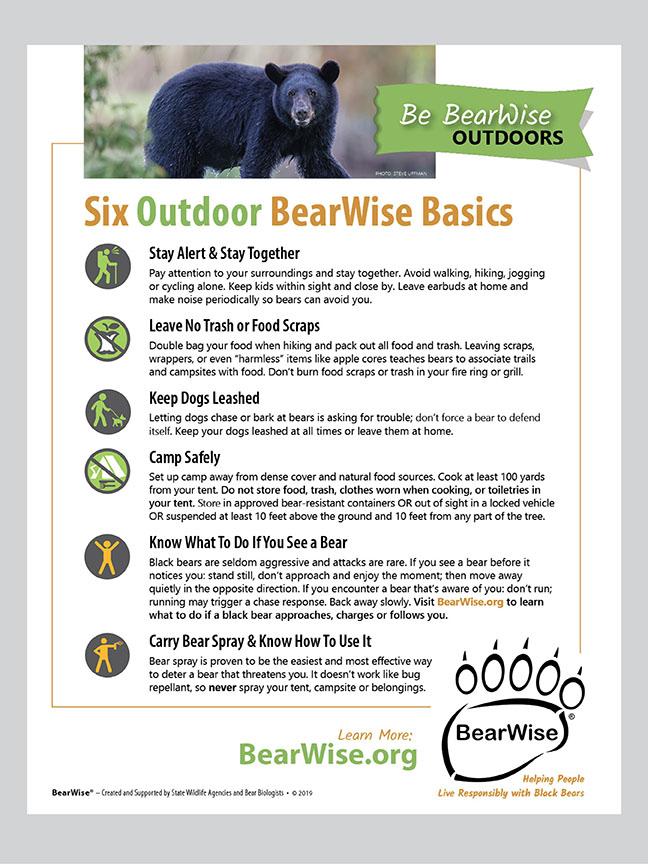 Six Outdoor BearWise Basics flyer