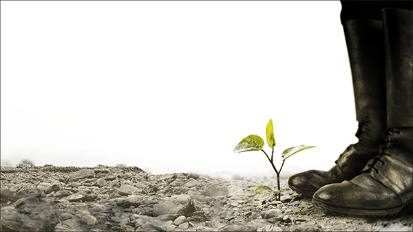 Artwork for Year One a play by Erik Gernand. A pair of black boots stand next to a growing sapling