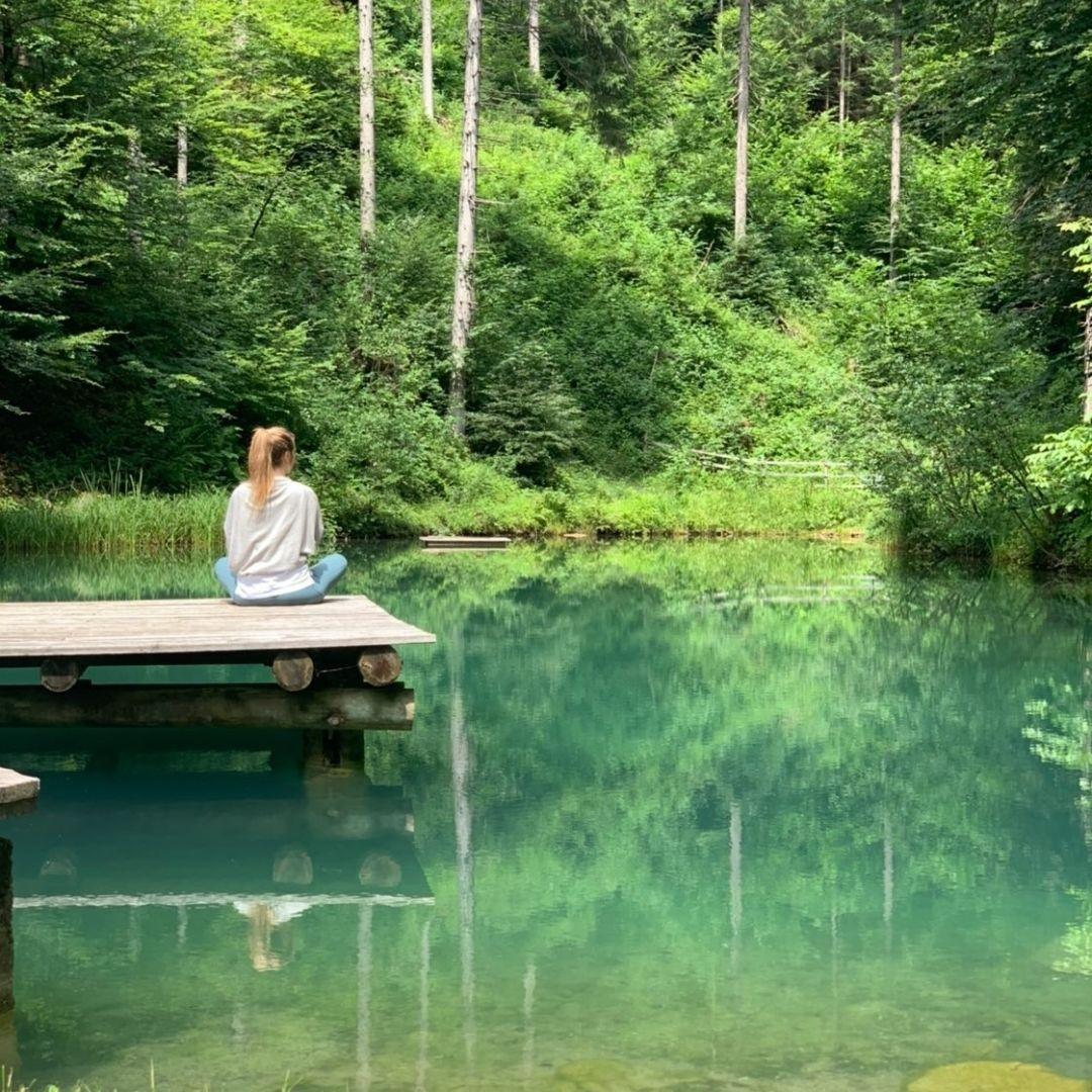 Stille am Wald.Teich