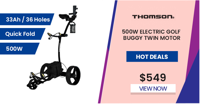 500W Electric Golf Buggy Twin Motor