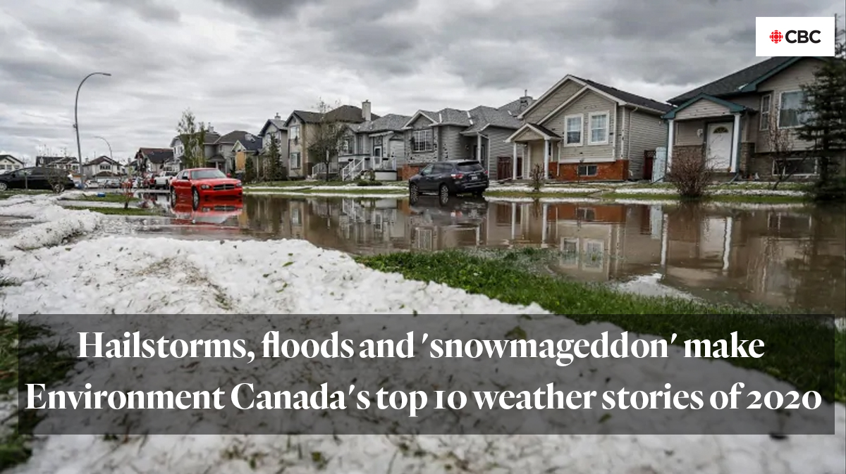 CBC article