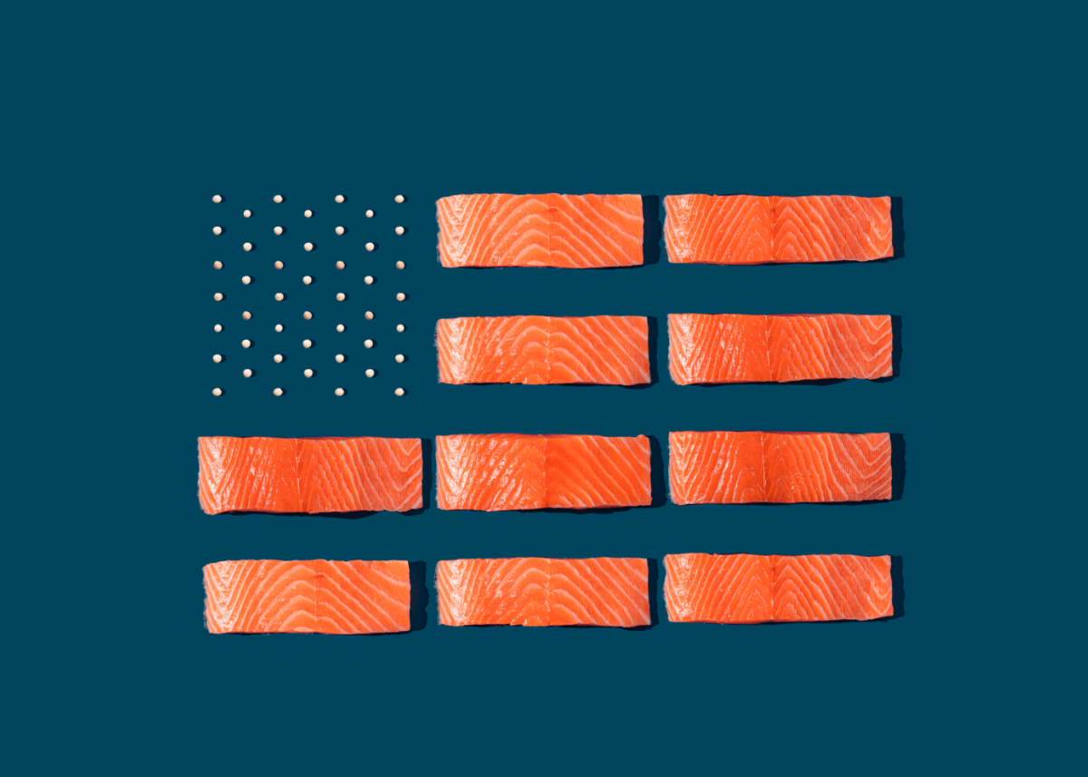 illustration of american flag made up of salmon filet