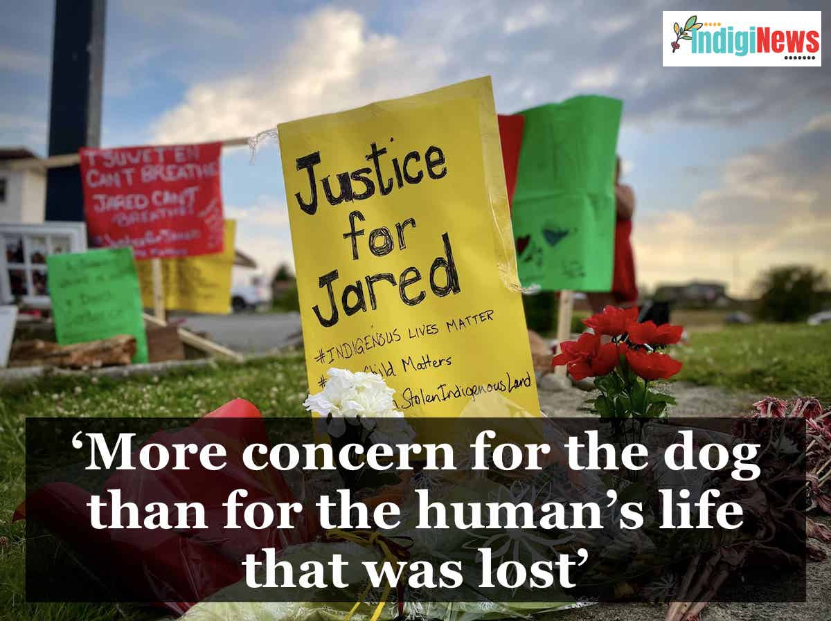 IndigiNews article: 'More concern for the dog than for the human's life that was lost'