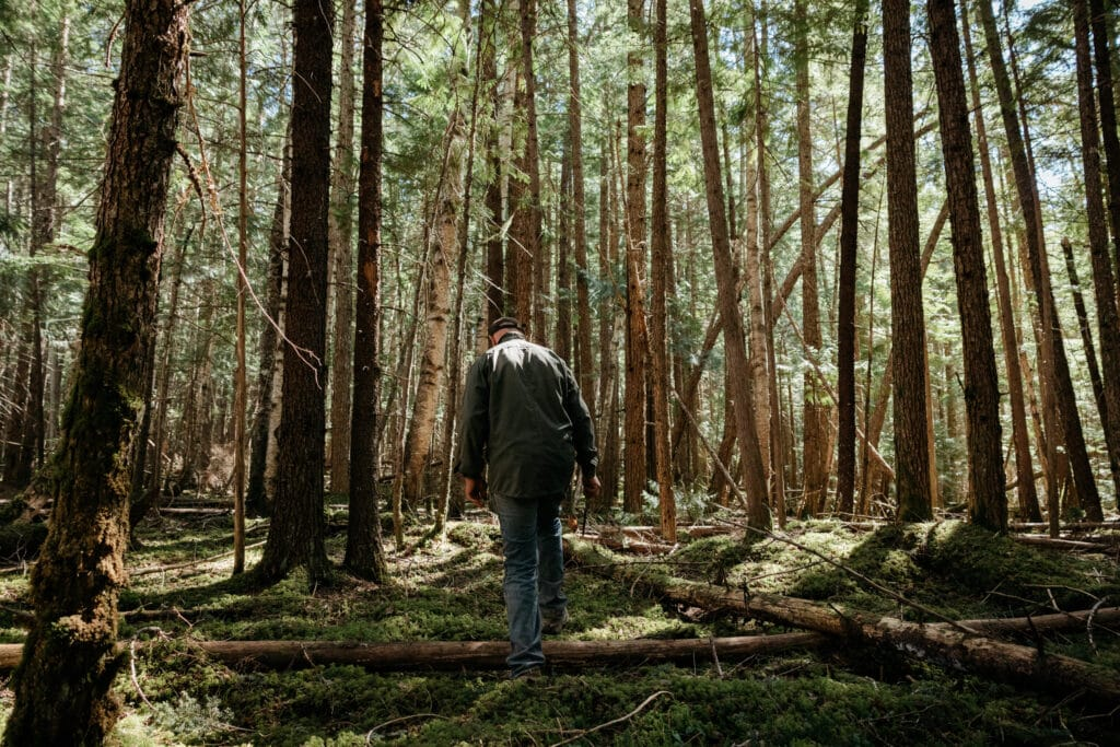 A man walks through a family woodlot in B.C.'s Kispiox Valley. Photo: Marty Clemens / The Narwhal