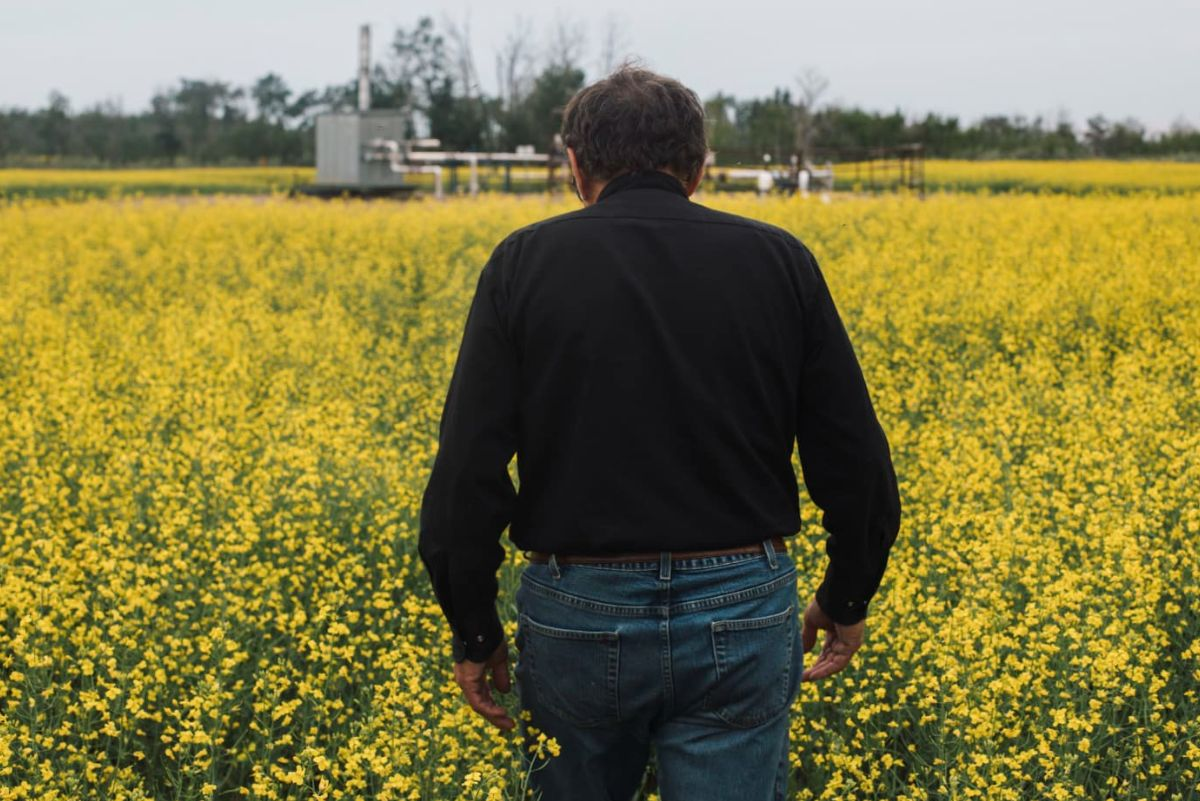 man's back as he walks in a field of yellow flowers