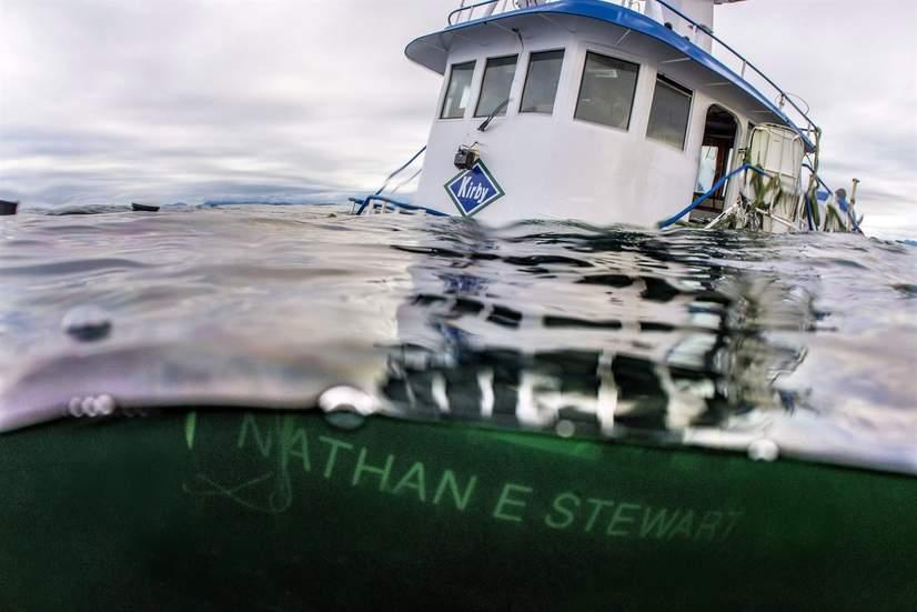 On Oct. 13, 2016, the Nathan E. Stewart tugboat ran aground near Bella Bella