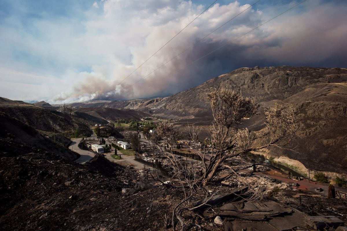 A burnt tree stands above the remains of mobile homes as the Elephant Hill wildfire burns on a mountain near Ashcroft, B.C., on July 9, 2017.