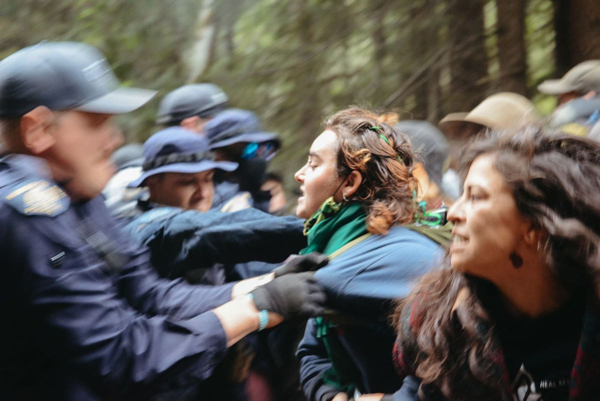 RCMP officer grabs protester at Fairy Creek blockades