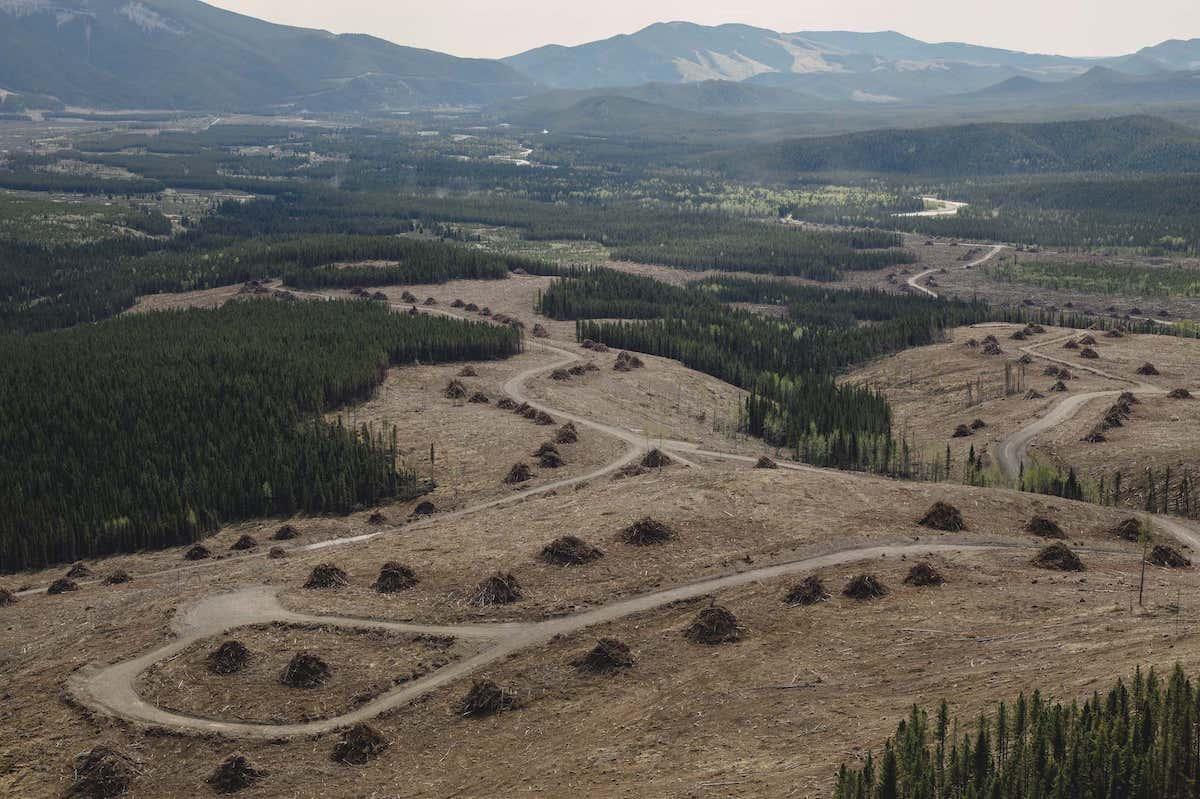 Alberta coal exploration on eastern slopes Rocky Mountains