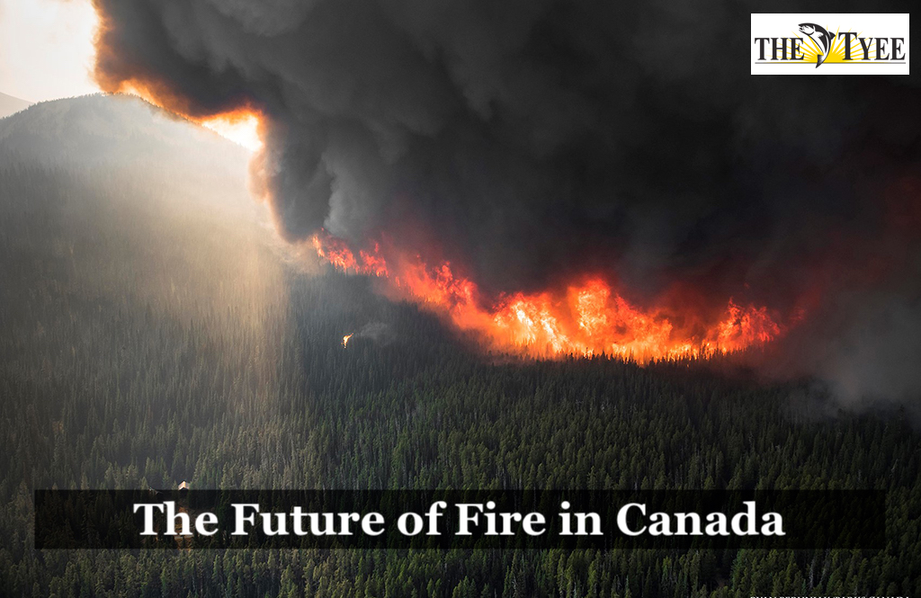 Tyee article: The future of fire in Canada