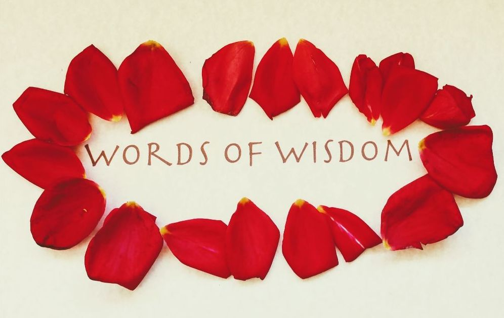 Love and Loss…Turning to the Plant Kingdom for Comfort & Counsel