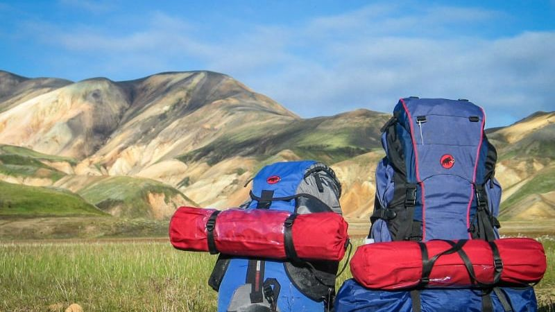 2 blue and red back packs in a green landscape