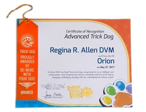 Trick Dog Title certificate and ribbon