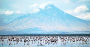 Volcán Ol Doinyo Lengai. Impresionante! Para la ascensión se necesita estar en buena forma física.