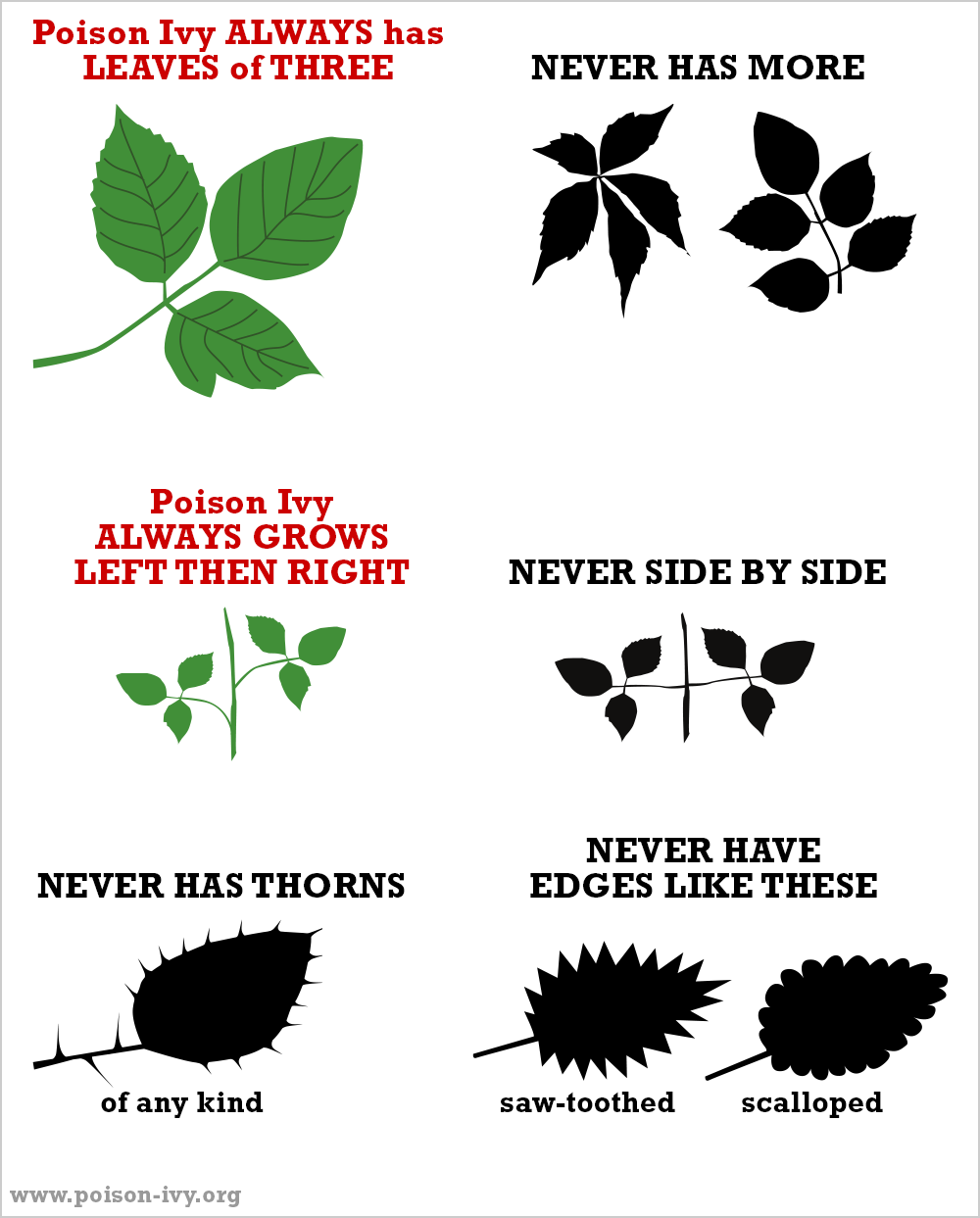 Poison Ivy Traits