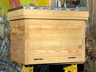 Horizontal Hive