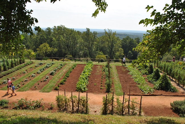Weed Free Gardening At Monticello