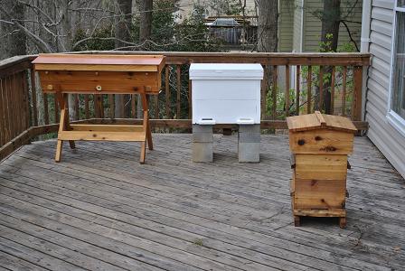 Top Bar, Horizontal, & Warre Hive