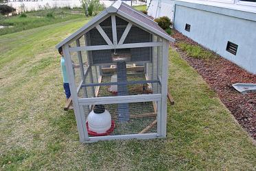 Chicken Coop - Front