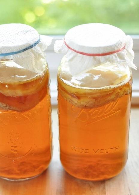 Kombucha Tea Brewing