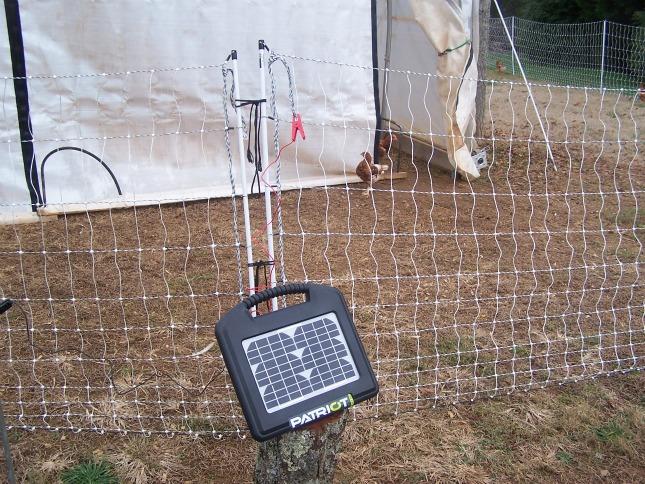 Solar Powered Fence Energizer