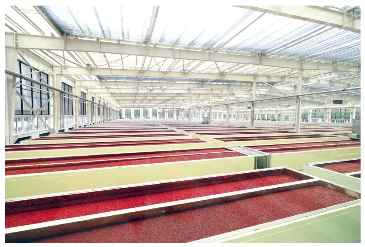 Juan Cheng Pixian Douban Factory