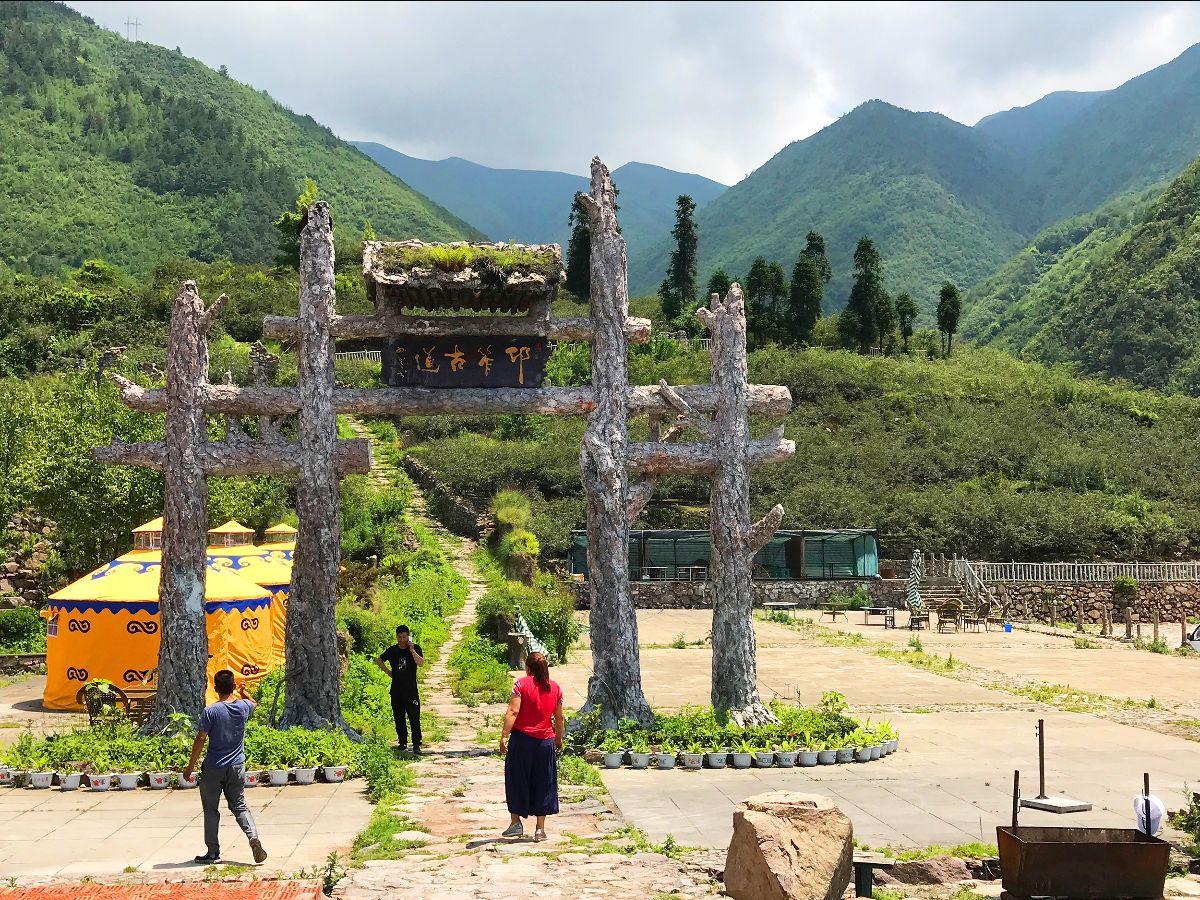 Qingxi Gong Jiao planting base