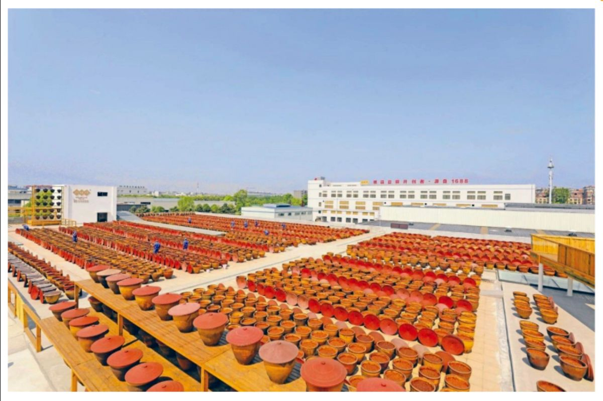 Juan Cheng Pixian Douban aging yard