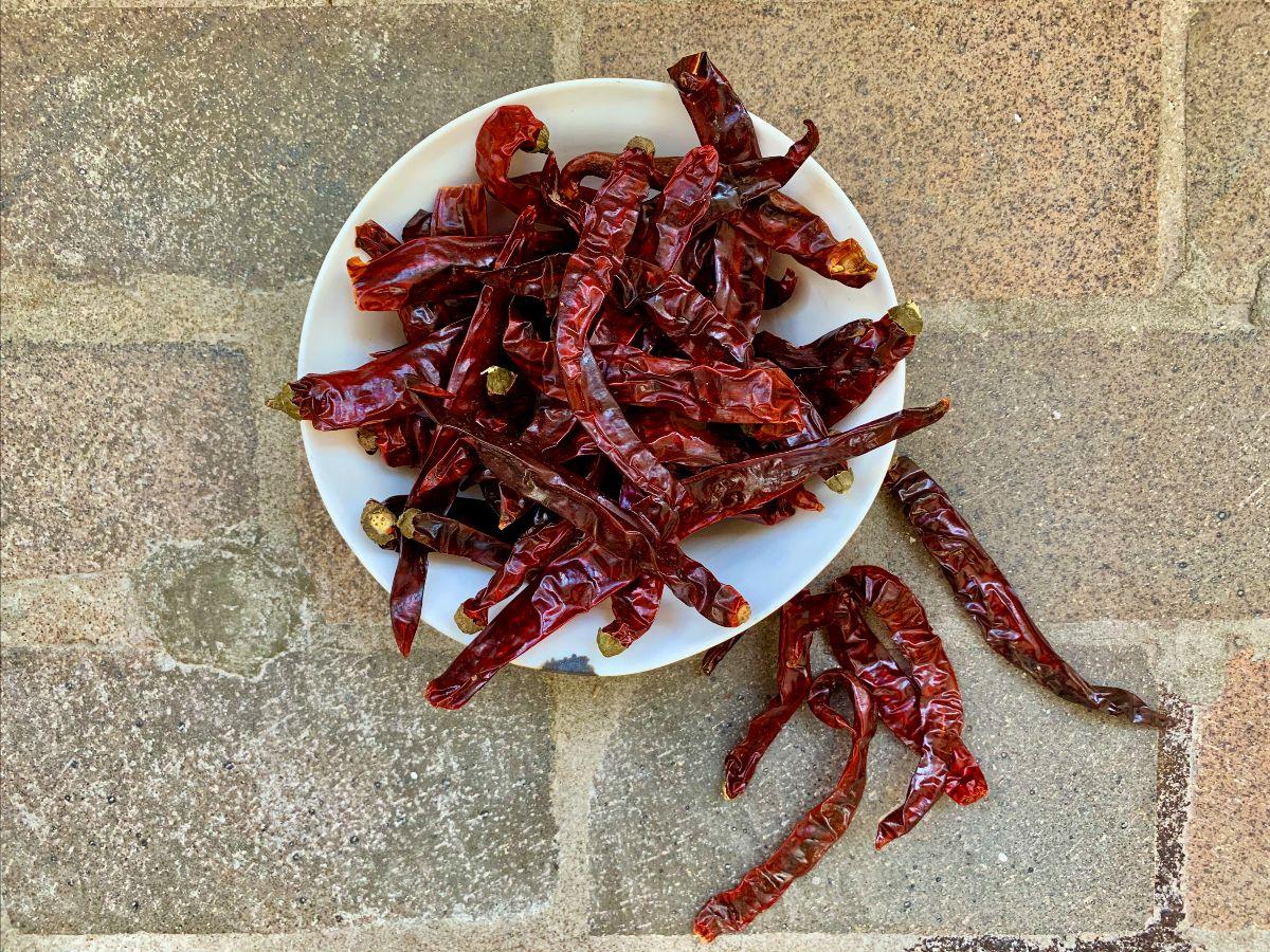 Er jing tiao chili