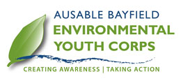 Environmental Youth Corps being formed.