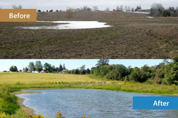 World Wetlands Day is Tuesday, February 2.