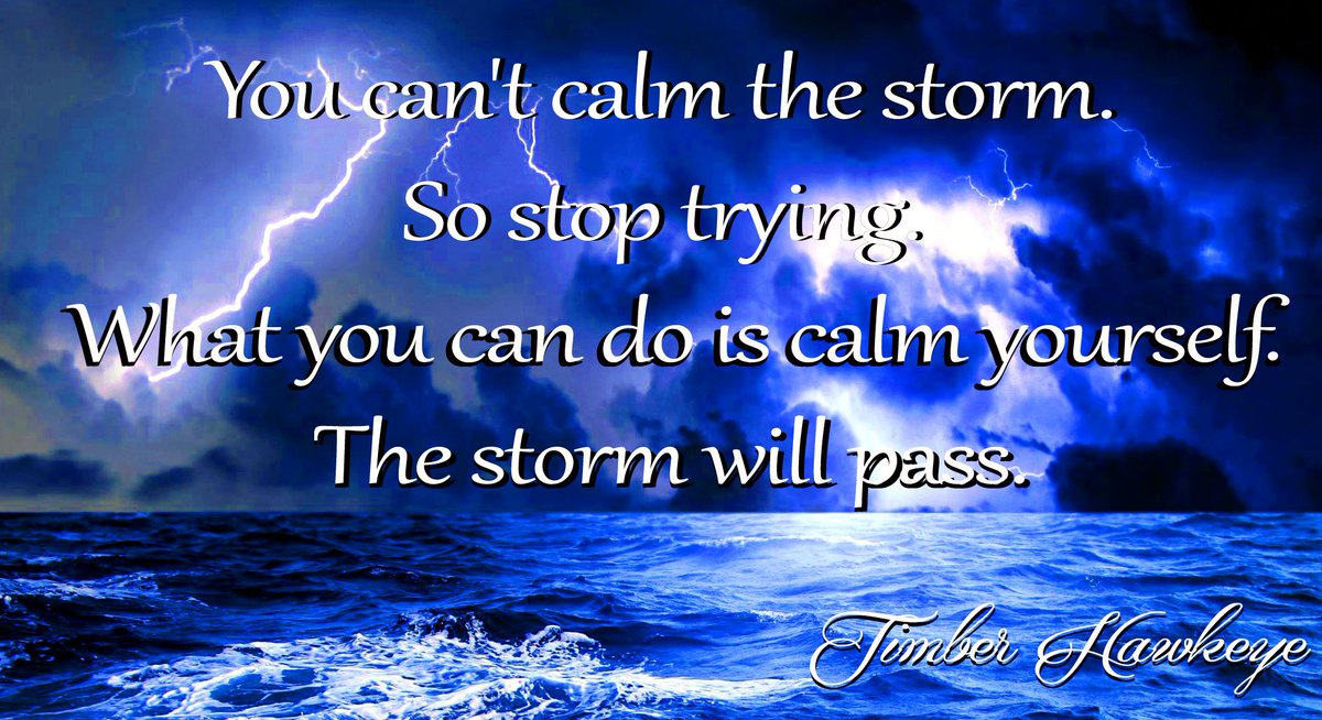 You can't calm the storm. So stop trying. What you can do is calm yourself. The storm will pass. –Timber Hawkeye