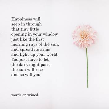 Happiness will seep in through that tiny little opening in your window just like the first morning rays of the sun, and spread its arms and light up your world. You just have to let the dark night pass, the sun will rise and so will you.
