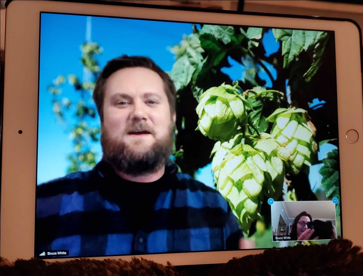 Virtual Beer Class with Hops Background