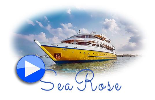 SeaRose nuevo barco de Submaldives