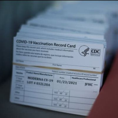 Image shows a stack of cards reading 'COVID-19 Vaccination Record Card', held together by an elastic band.
