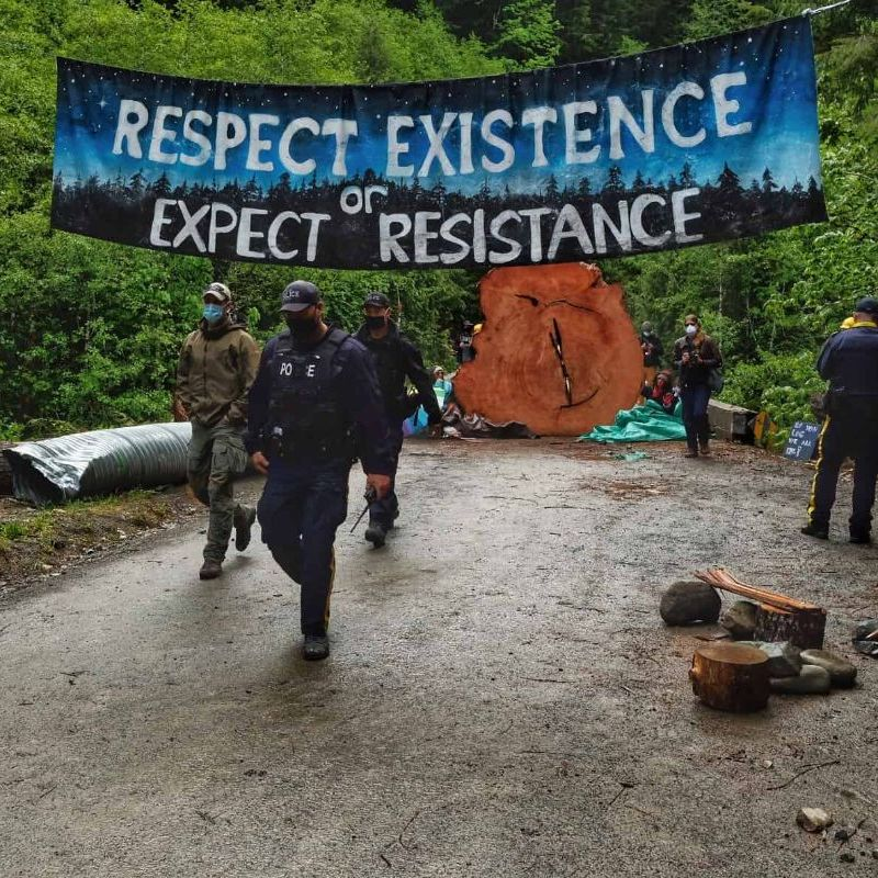 Photo shows the Fairy Creek Blockade, showing police and old-growth forest defenders underneath a banner reading