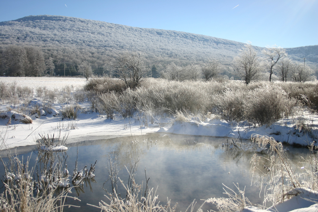Pond in winter at Canaan Valley National Wildlife Refuge, WV. Photo: USFWS