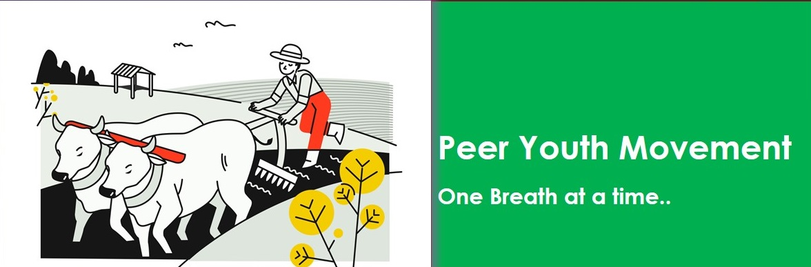 PEER YOUTH MOVEMENT