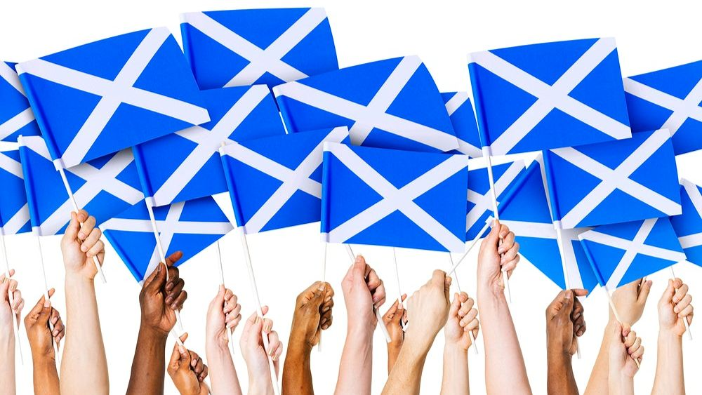 Many arms and hands holding many Scottish flags