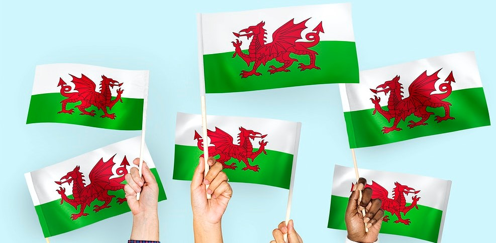 Many Welsh flags being held by many hands
