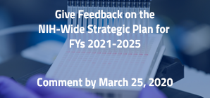 Give Feedback on the Framework for the NIH-Wide Strategic Plan for FYs 2021-2025, Comment by March 25, 2020