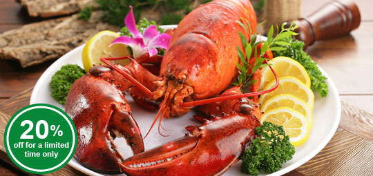 Fine Dining Special: 20% Whole Frozen Lobster & Smoked Salmon