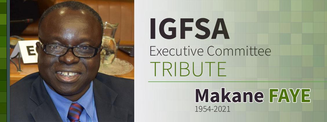 IGFSA Executive Committee Member Spotlight Tribute - Makane FAYE