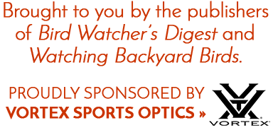 An e-newsletter brought to you by the publishers of Bird Watcher's Digest and Watching Backyard Birds. Proudly sponored by Swarovksi Optik.